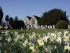 church-in-spring